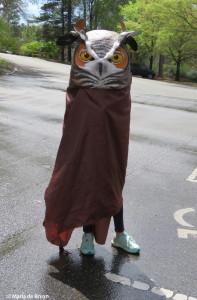 owl-img_3036c2a9-maria-de-bruyn-res